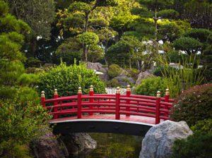 Tipps zum Anlegen eines japanischen Gartens